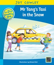 Mr Tang's Taxi in the Snow